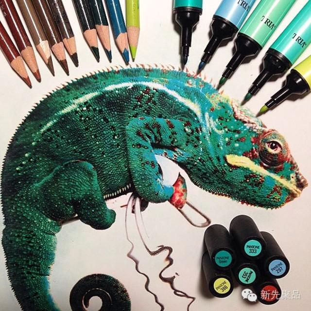 逼真至极的彩笔动物画