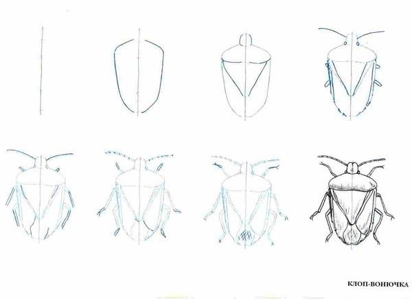 植物简笔画技巧和理解方式,②狗的画法合集,③猫的画法合集,④昆虫的