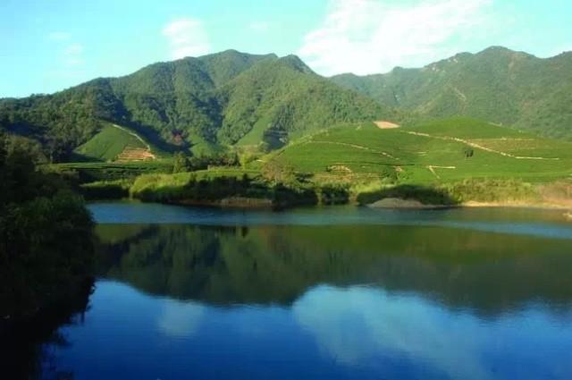 坐拥王位山,石扶梯,龙坞湖等迷人自然风景资源,是无数人梦想中的好
