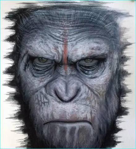 超逼真的动物手绘!