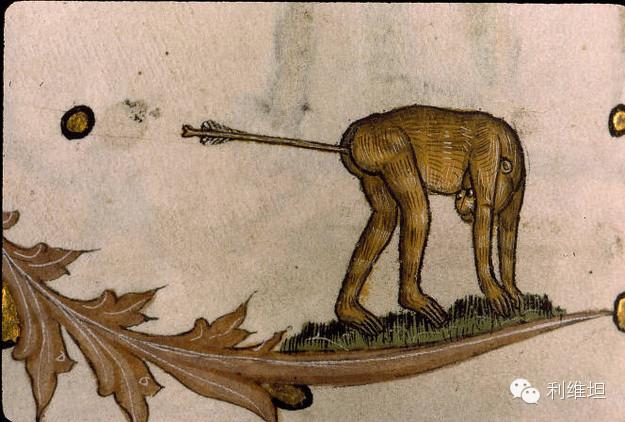 中世纪重口味涂鸦艺术 他们为什么钟情于屁眼儿啊