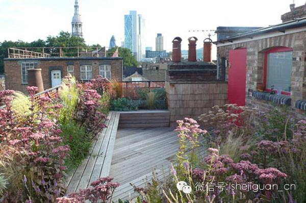 在国外这个叫楼顶花园,好想在上面睡午觉