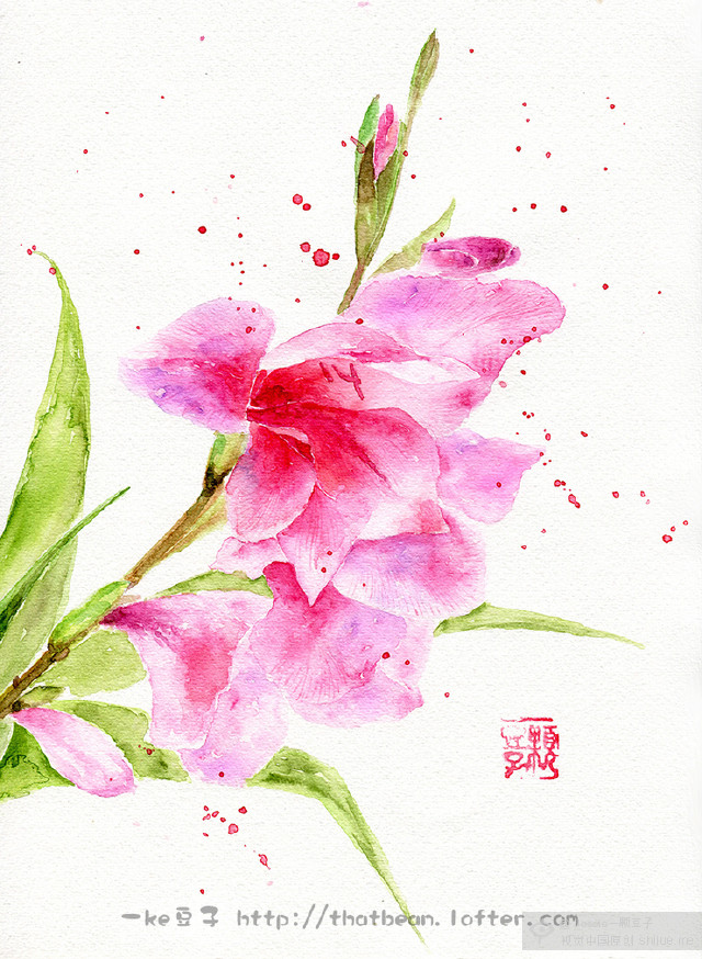 【新锐100展】水彩花卉盛宴——jessie一颗豆子的