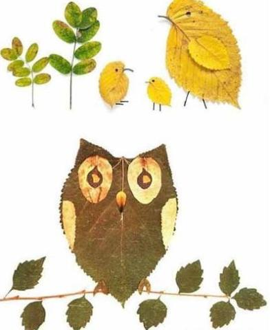 有趣的树叶拼贴画   家长可以和孩子一起使用各种形状,各种姿态