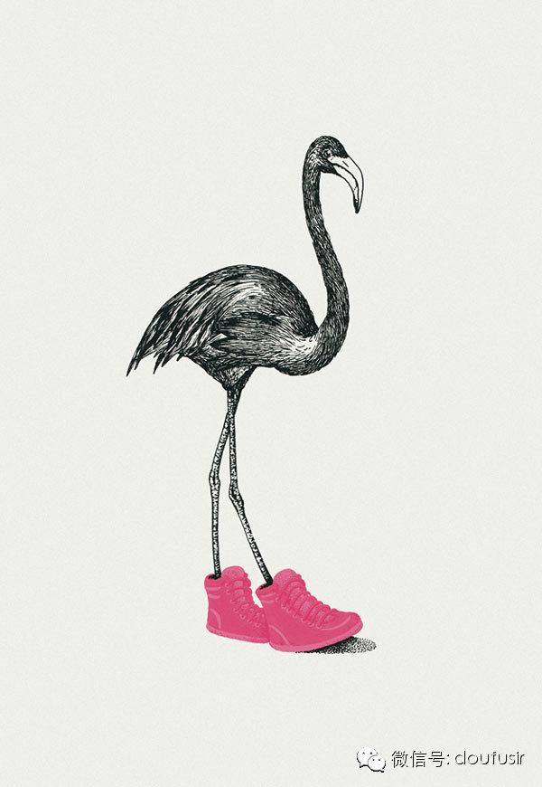 动物 鸟类 600_870 竖版 竖屏