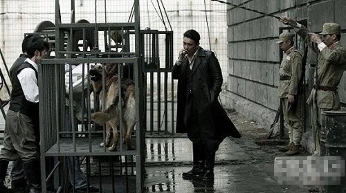 动物行刑处死美女