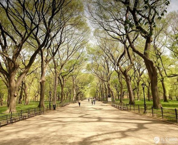8.纽约中央公园   这条大道简直是摄影圣地。