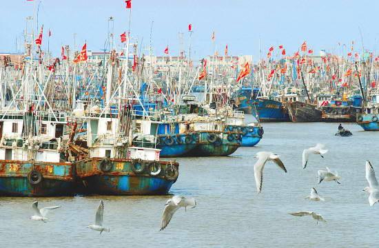 游路线推荐:上海-崇明岛