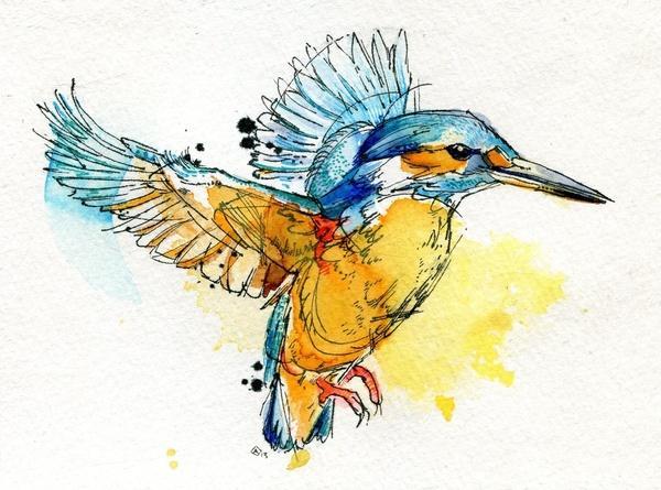 ond动物水彩画作品