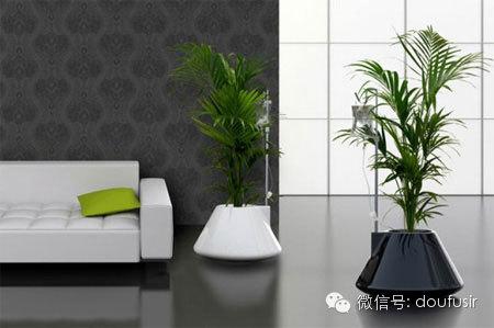 【身边的设计】no.041 创意花盆