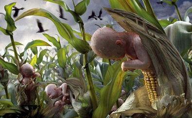 罕见动物转基因物种实录